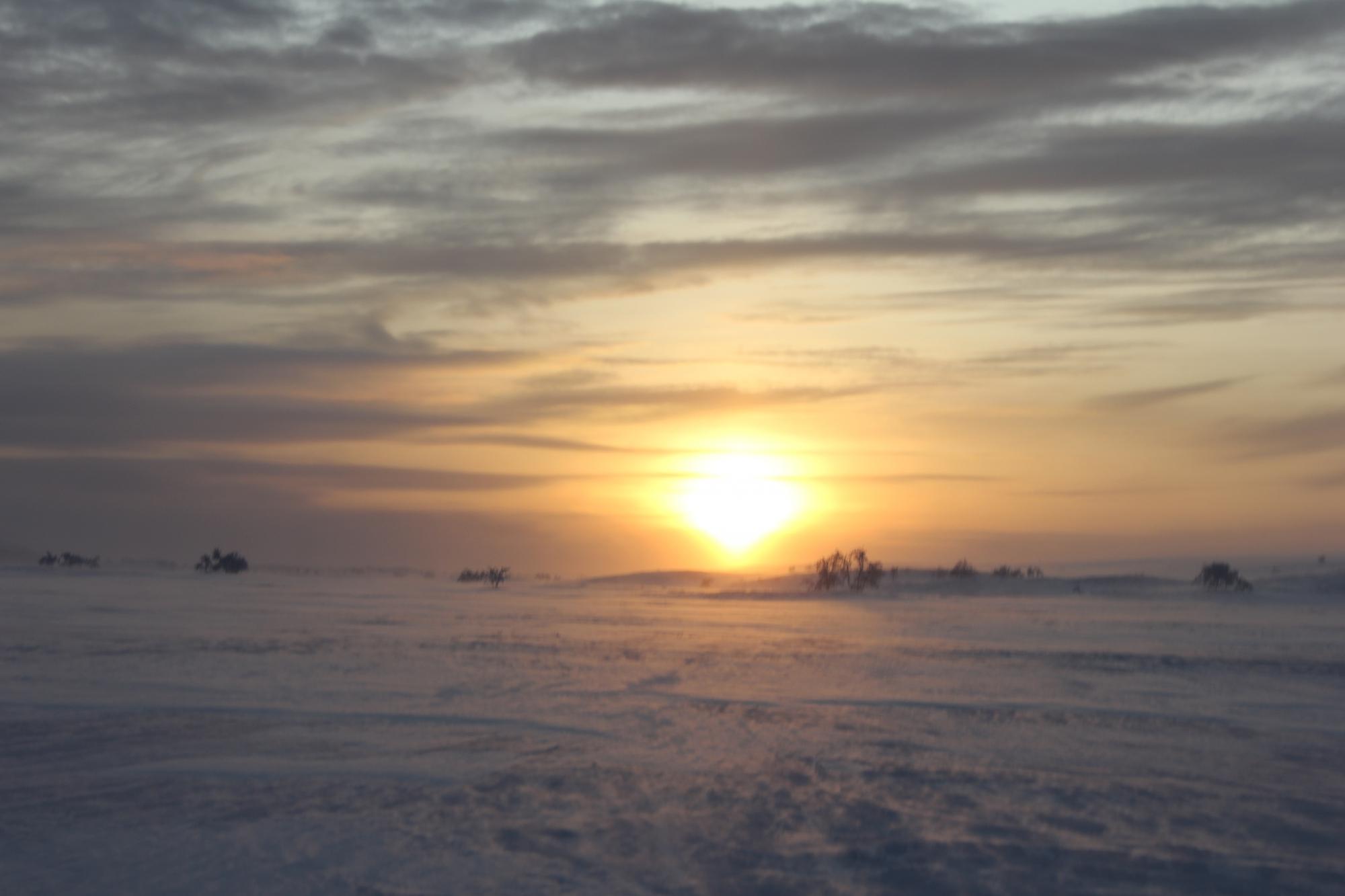 Finnmarksvidda- hele historien!